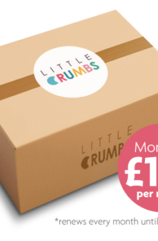 Single Monthly Little Crumbs Box